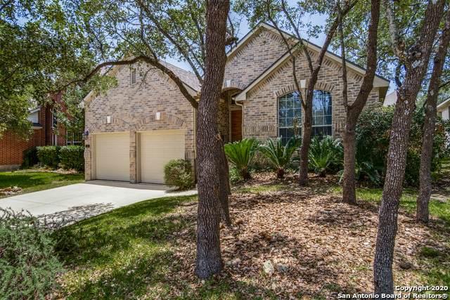 18 Texas Laurel, San Antonio, TX 78256 (MLS #1467918) :: The Heyl Group at Keller Williams