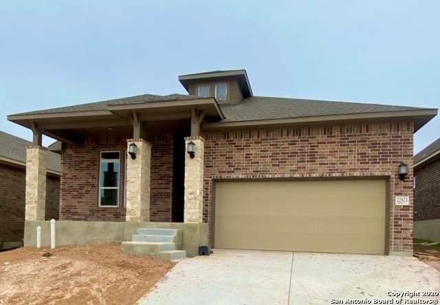 22923 Grande Vista, San Antonio, TX 78261 (MLS #1474233) :: Neal & Neal Team