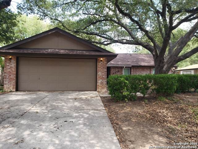 14206 Ridge Meadow Dr, San Antonio, TX 78233 (MLS #1474454) :: The Gradiz Group