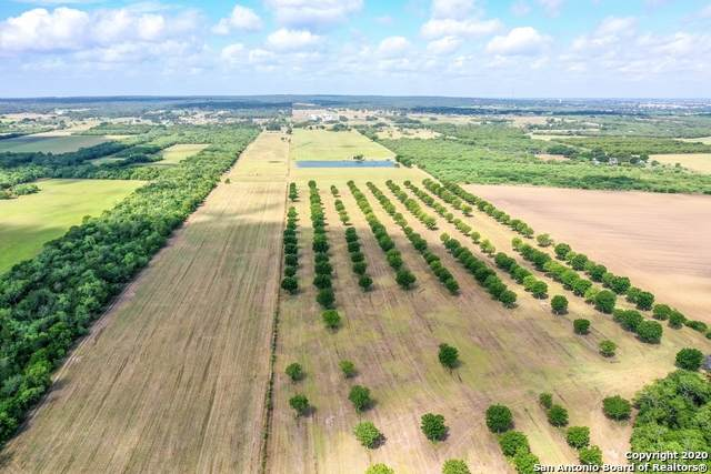 2540 County Road 342, La Vernia, TX 78121 (MLS #1474674) :: The Real Estate Jesus Team