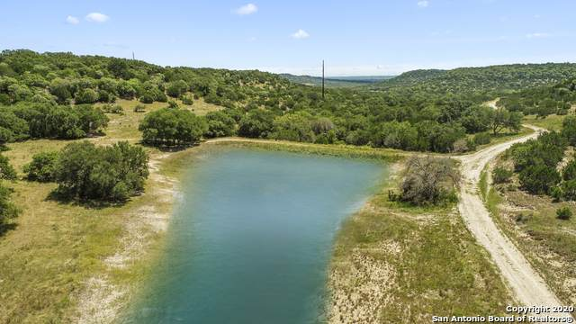 1716 Sanctuary Lane, Blanco, TX 78606 (#1477947) :: The Perry Henderson Group at Berkshire Hathaway Texas Realty