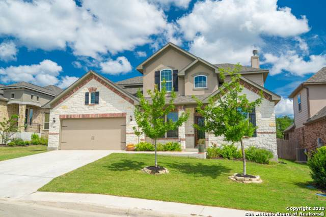 462 Scenic Lullaby, Spring Branch, TX 78070 (MLS #1479900) :: Concierge Realty of SA