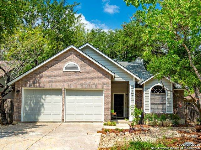 13942 Blenhein Ridge, San Antonio, TX 78231 (MLS #1480798) :: The Real Estate Jesus Team
