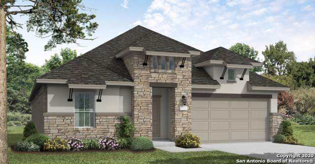 28717 Coral Bark, San Antonio, TX 78260 (MLS #1481167) :: Santos and Sandberg