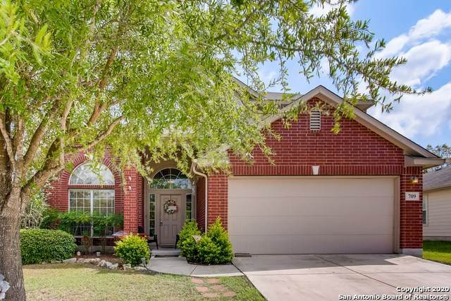 709 Hollow Rdg, Schertz, TX 78108 (MLS #1484240) :: Neal & Neal Team