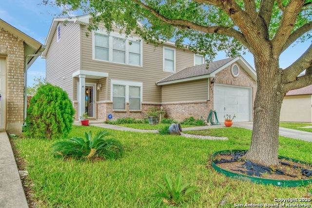 6851 Canary Meadow Dr, Converse, TX 78109 (MLS #1484934) :: The Gradiz Group