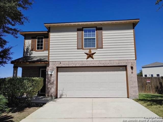 5903 Fox Cyn, San Antonio, TX 78252 (MLS #1485861) :: Neal & Neal Team