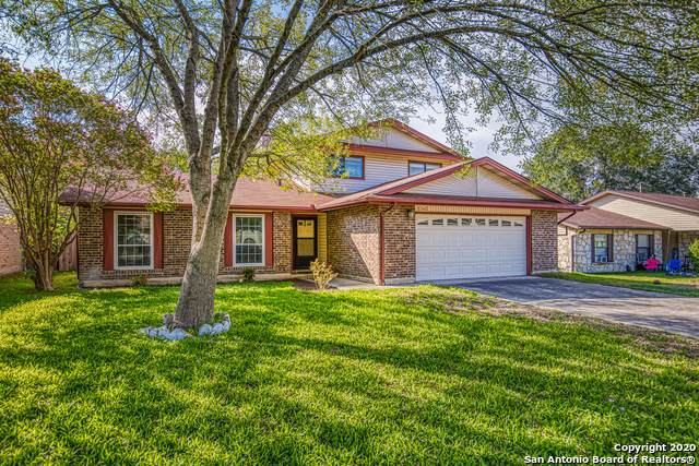 5342 Maple Vista, San Antonio, TX 78247 (MLS #1486119) :: The Gradiz Group