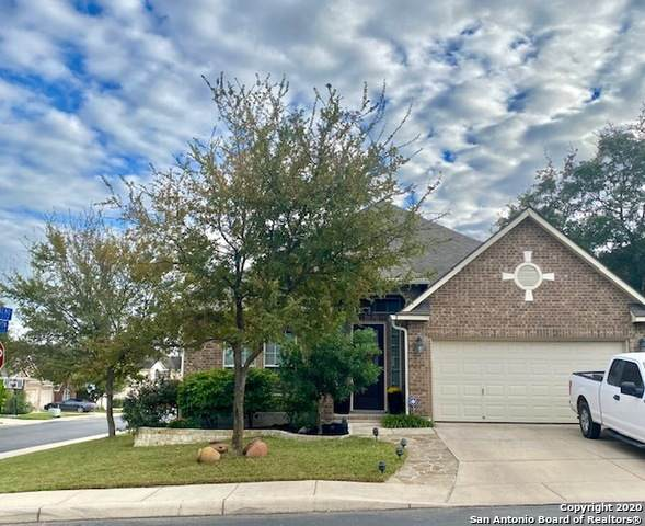 27242 Trinity Bend, San Antonio, TX 78261 (MLS #1488458) :: REsource Realty