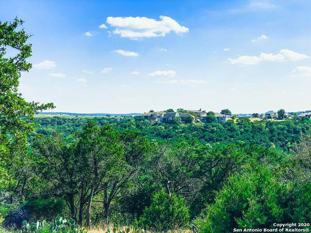 437 Paradise Point Dr, Boerne, TX 78006 (MLS #1489140) :: The Lugo Group