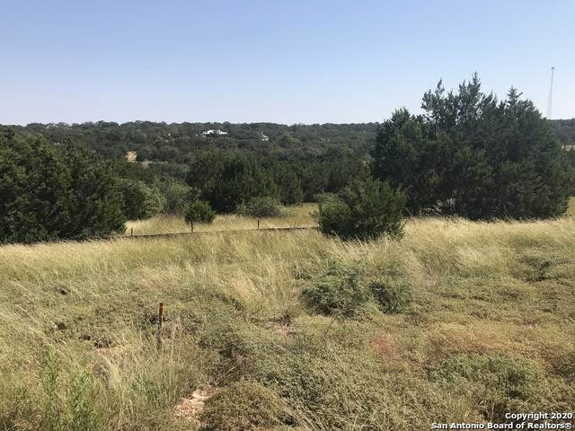 739 Iron Hill, New Braunfels, TX 78130 (MLS #1489283) :: Real Estate by Design