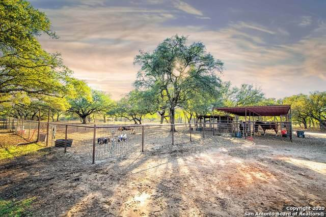 317 County Road 4314, Hondo, TX 78861 (MLS #1490446) :: Real Estate by Design