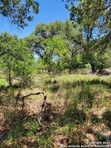 103 Cherry Ridge, Floresville, TX 78114 (MLS #1491142) :: Neal & Neal Team