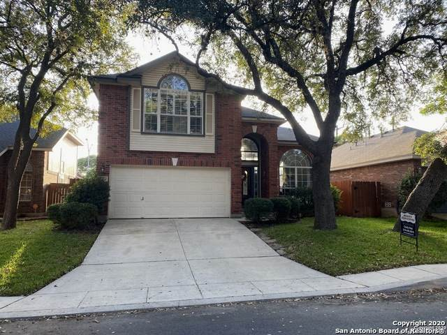 3351 Tumblewood Trail, San Antonio, TX 78247 (MLS #1491307) :: The Castillo Group