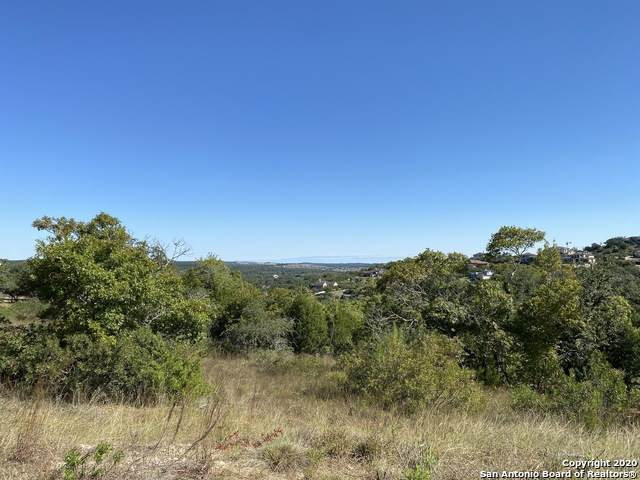 LOT 30 Avila Ridge, San Antonio, TX 78255 (MLS #1491542) :: Alexis Weigand Real Estate Group
