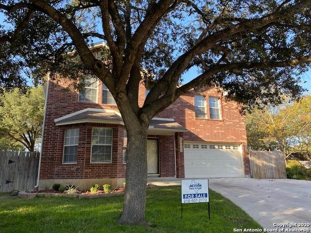 13311 Possum Circle, San Antonio, TX 78232 (MLS #1493989) :: BHGRE HomeCity San Antonio