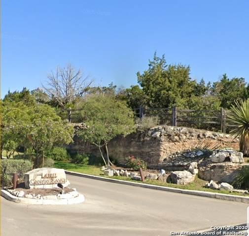 2814 County Road 2814, San Antonio, TX 78056 (MLS #1494361) :: Alexis Weigand Real Estate Group