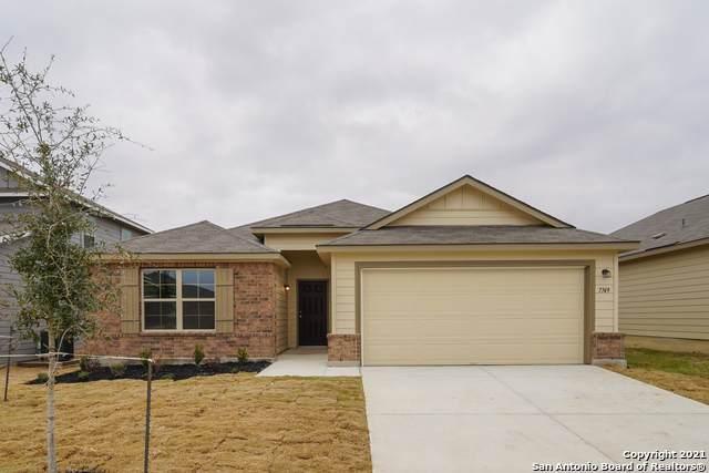 7749 Champion Creek, San Antonio, TX 78252 (MLS #1496209) :: The Castillo Group