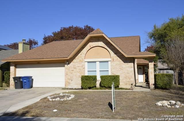 3311 Tree Grove Dr, San Antonio, TX 78247 (MLS #1498048) :: JP & Associates Realtors