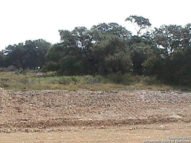 411 Brookhollow, New Braunfels, TX 78132 (MLS #1502394) :: JP & Associates Realtors