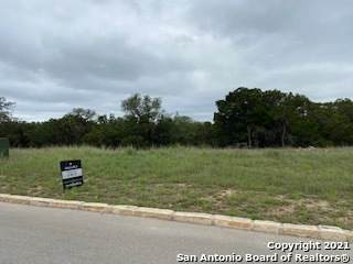 116 Monarca Blvd, Boerne, TX 78006 (MLS #1503400) :: BHGRE HomeCity San Antonio