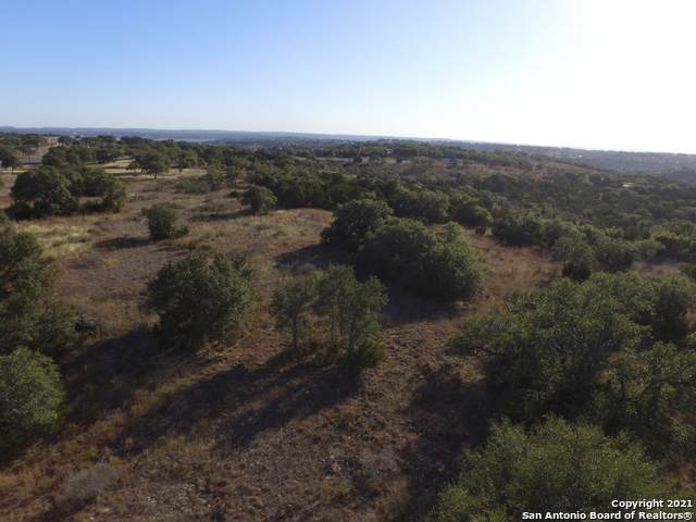 251 Star Grass, Spring Branch, TX 78070 (MLS #1503843) :: The Rise Property Group
