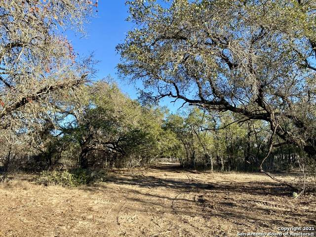 LOT 1 County Road 6723, Natalia, TX 78059 (MLS #1504163) :: The Lugo Group