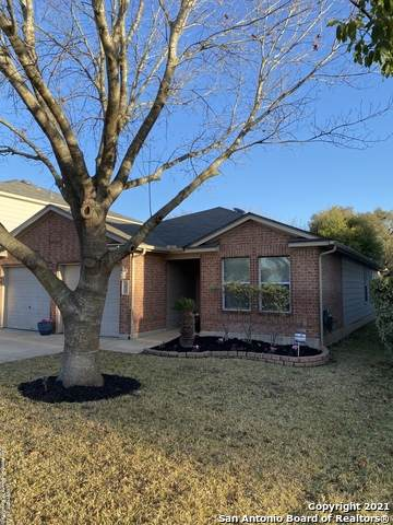 3834 Alpine Aster, San Antonio, TX 78259 (MLS #1504430) :: Santos and Sandberg