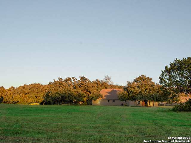 585 Witt Rd, Center Point, TX 78010 (MLS #1505379) :: Vivid Realty