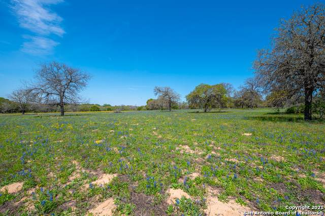 122 Rosewood Dr, La Vernia, TX 78121 (MLS #1505431) :: The Lugo Group