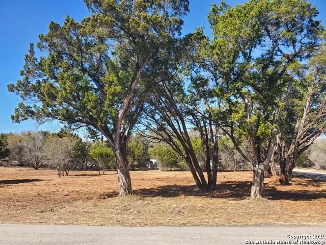 713 Trail Crest Dr, Canyon Lake, TX 78133 (MLS #1505549) :: The Gradiz Group