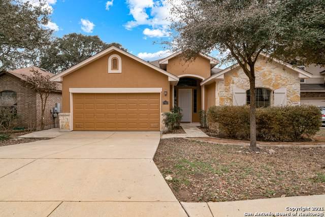 27923 Sonoma Ambre, Boerne, TX 78015 (MLS #1505983) :: Concierge Realty of SA