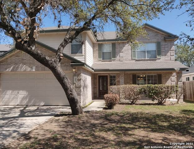 9623 Wasp Crk, Helotes, TX 78023 (MLS #1506864) :: Alexis Weigand Real Estate Group
