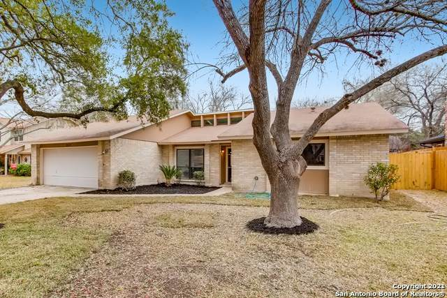 3519 Le Blanc St, San Antonio, TX 78247 (MLS #1509544) :: The Castillo Group