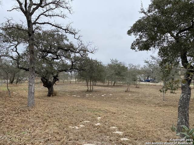101 Chuckwagon Dr, La Vernia, TX 78121 (MLS #1511656) :: Williams Realty & Ranches, LLC