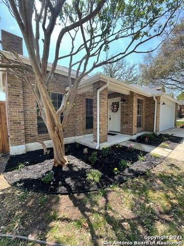 2446 Facet Oak, San Antonio, TX 78232 (MLS #1517475) :: Vivid Realty
