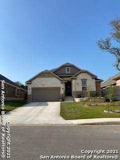 5049 Blue Ivy, Bulverde, TX 78163 (MLS #1517674) :: Keller Williams City View