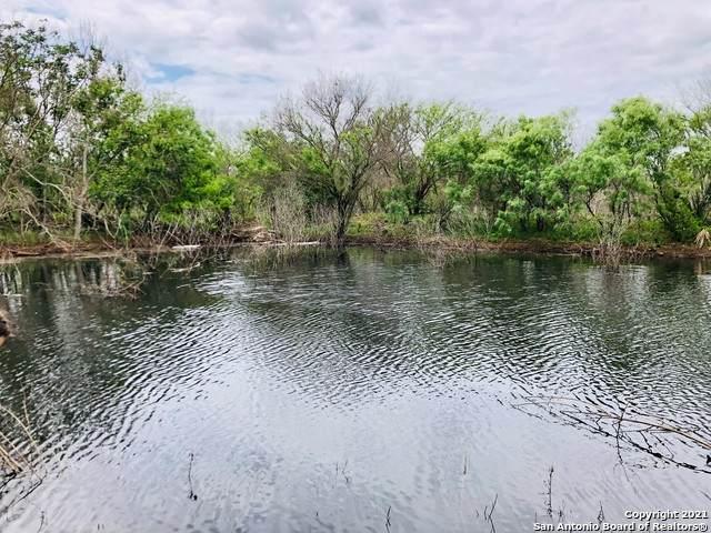 260 County Road 668, Devine, TX 78016 (MLS #1521232) :: Keller Williams Heritage