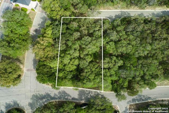 98 Regents Park, San Antonio, TX 78230 (MLS #1521943) :: The Rise Property Group