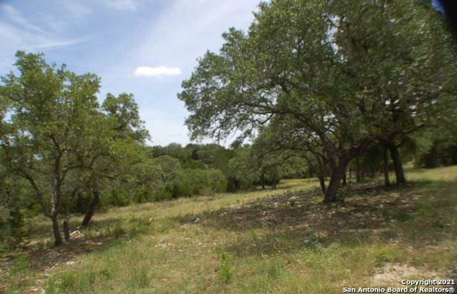 2224 San Jose Way, Canyon Lake, TX 78133 (MLS #1522871) :: The Gradiz Group
