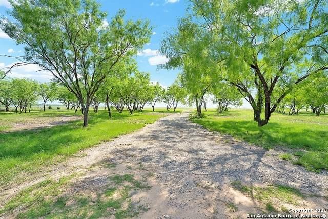 1029 Nickerson Farms Rd, Seguin, TX 78155 (MLS #1525325) :: Neal & Neal Team
