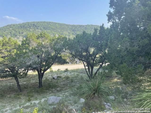 LOT 201 Contour, Canyon Lake, TX 78133 (MLS #1526951) :: Keller Williams Heritage
