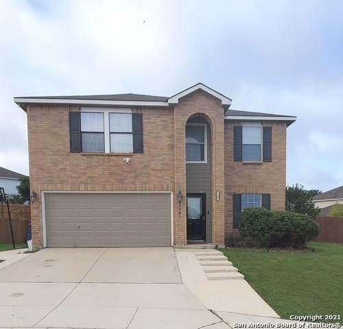 13307 Hampton Dale, Shavano Park, TX 78249 (MLS #1537104) :: Beth Ann Falcon Real Estate