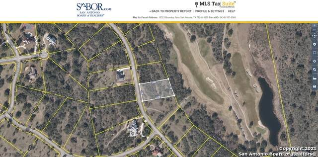 13323 Roundup Pass, San Antonio, TX 78245 (#1537139) :: The Perry Henderson Group at Berkshire Hathaway Texas Realty