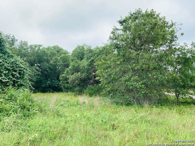163 Country Acres Dr, Adkins, TX 78101 (MLS #1537269) :: Neal & Neal Team