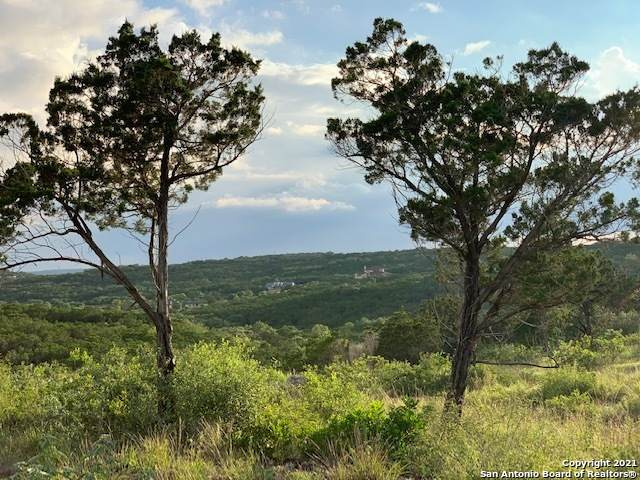 2771 Pr, Mico, TX 78056 (MLS #1543938) :: The Glover Homes & Land Group