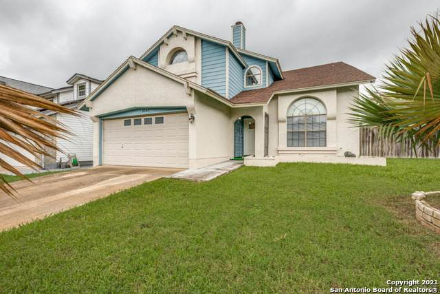 8043 Dove Trail Dr, San Antonio, TX 78244 (MLS #1544093) :: The Real Estate Jesus Team