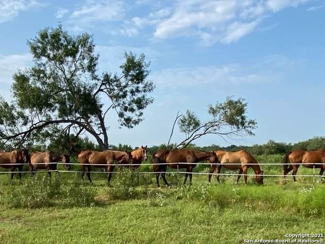 3285 Pittman Rd, St Hedwig, TX 78152 (MLS #1544623) :: Carolina Garcia Real Estate Group