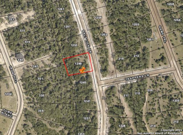 1249 Salt Lick Dr, New Braunfels, TX 78132 (MLS #1544931) :: The Gradiz Group
