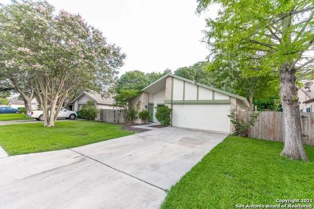 16535 Twin Fox, San Antonio, TX 78247 (MLS #1544980) :: Williams Realty & Ranches, LLC